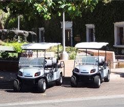 img-home-cart